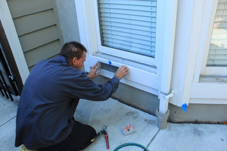 Home Rodent Proofing   Pacheco & Concord, CA   The Original