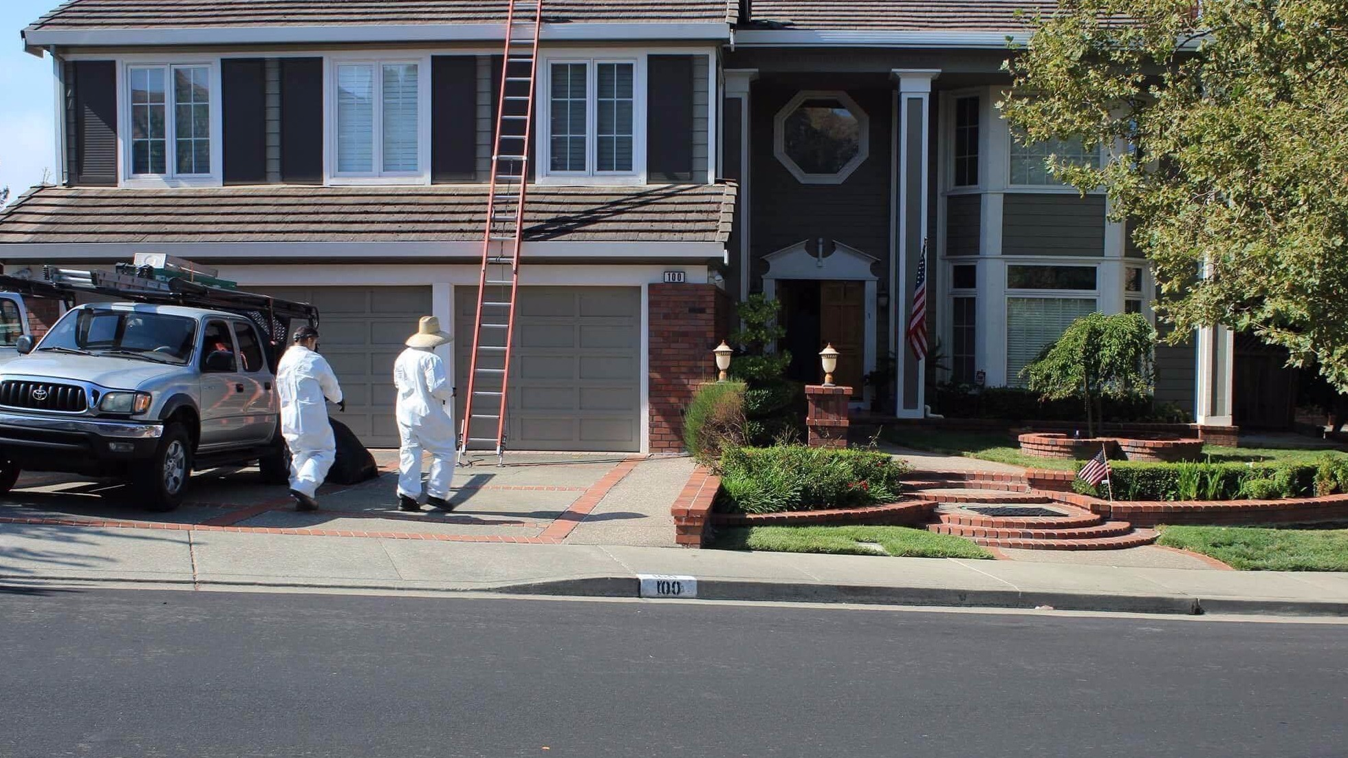 Rodent Control, Prevention & Clean Up   Pacheco & Concord